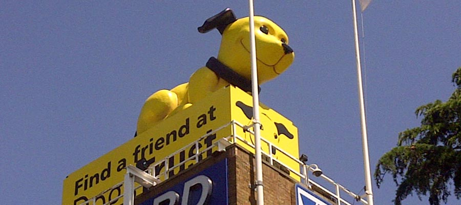 Giant nodding dog for dogs trust